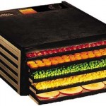 excalibur_dehydrator_5_tray